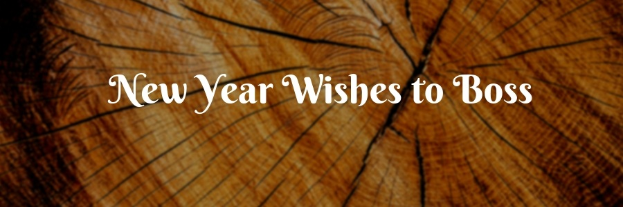 61+ Happy New Year Wishes to Boss - New Year Messages for Boss